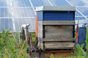 Photovoltaikanlage Weidach_4